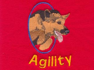 German Shepherd Agility Dog