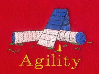 Agility A-Frame & Tunnel