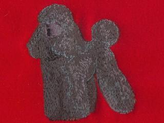 Poodle, Black Standard