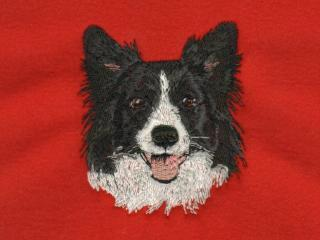 Border Collie Head 2