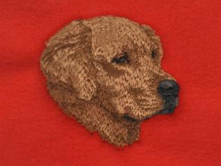 Golden Retriever Head 2