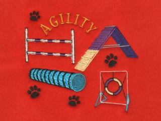 Agility Course 2