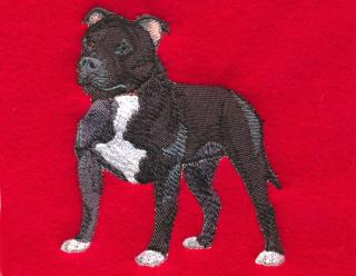 Black Staffordshire Terrier