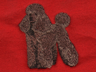 Poodle, Chocolate Standard