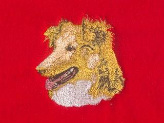 Shetland Sheepdog, Head