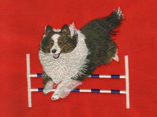 TriColored Shetland Sheepdog Over Jump