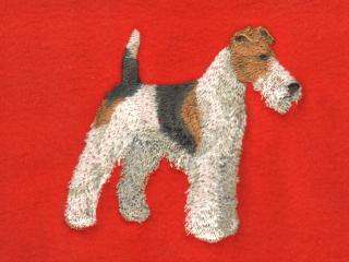 Fox Terrier, Wire Haired Body