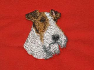 Fox Terrier, Wire Haired Head